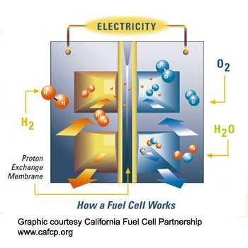 hydrogen-fuel-cell