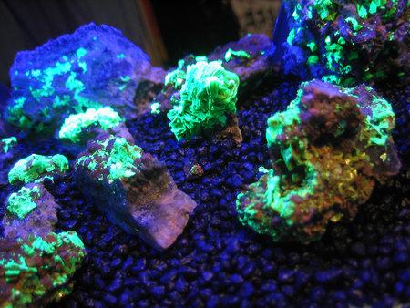 uranium-mineral