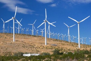 texas wind farm 5 300x200 Wind Farms Warm Local Climate Slightly, Albany Study Says