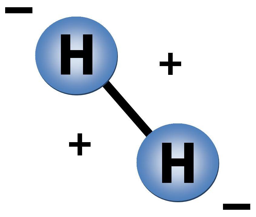 Hydrogen_Fuel_Cells