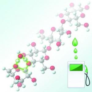 3-cellulose to bio-oil