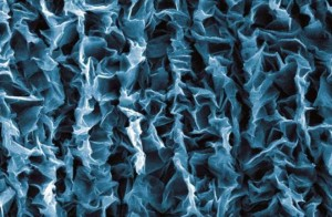 graphene-artificial-muscle-660x433
