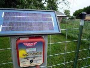 solarfencing.jpg.492x0_q85_crop-smart