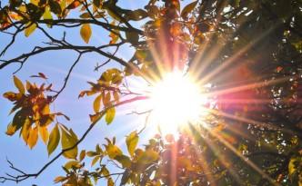 Solar Conversion