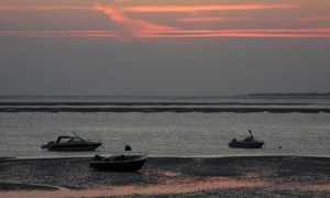 Evening in the mudflats