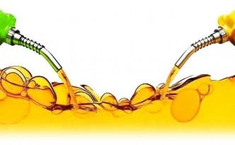 biofuel-petroleum