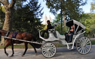 Are the Days Numbered for the Horse-Drawn Carriage in New York City's Central Park?