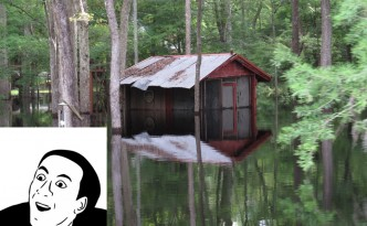 Gets a great deal on a house in a flood zone, surprised when it gets flooded out the very next season.