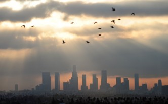 Birds fly across the sky at daybreak ove
