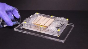 Evaporation Becomes the New Source of Renewable Energy