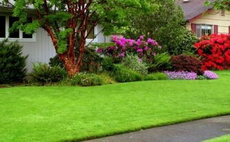 green-garden-2