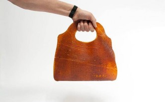 fruitleather-bag.jpg.662x0_q70_crop-scale