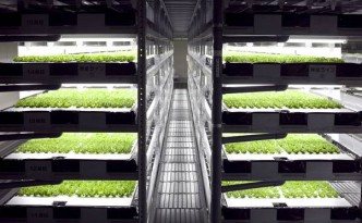 Spread-vertical-farm-trays_jpg_662x0_q70_crop-scale