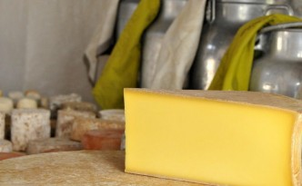 Cheese production byproducts are the newest power source in Albertville.