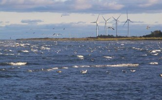 denmark_wind_power_jpg_662x0_q70_crop-scale