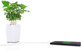 bioo-phone.jpg.662x0_q70_crop-scale