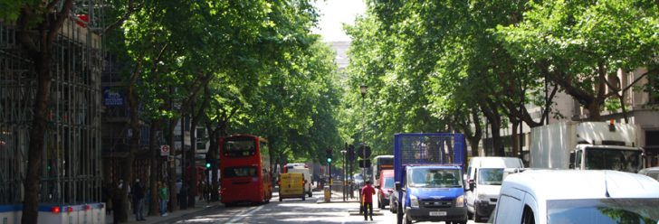 trees-in-cities-pollution