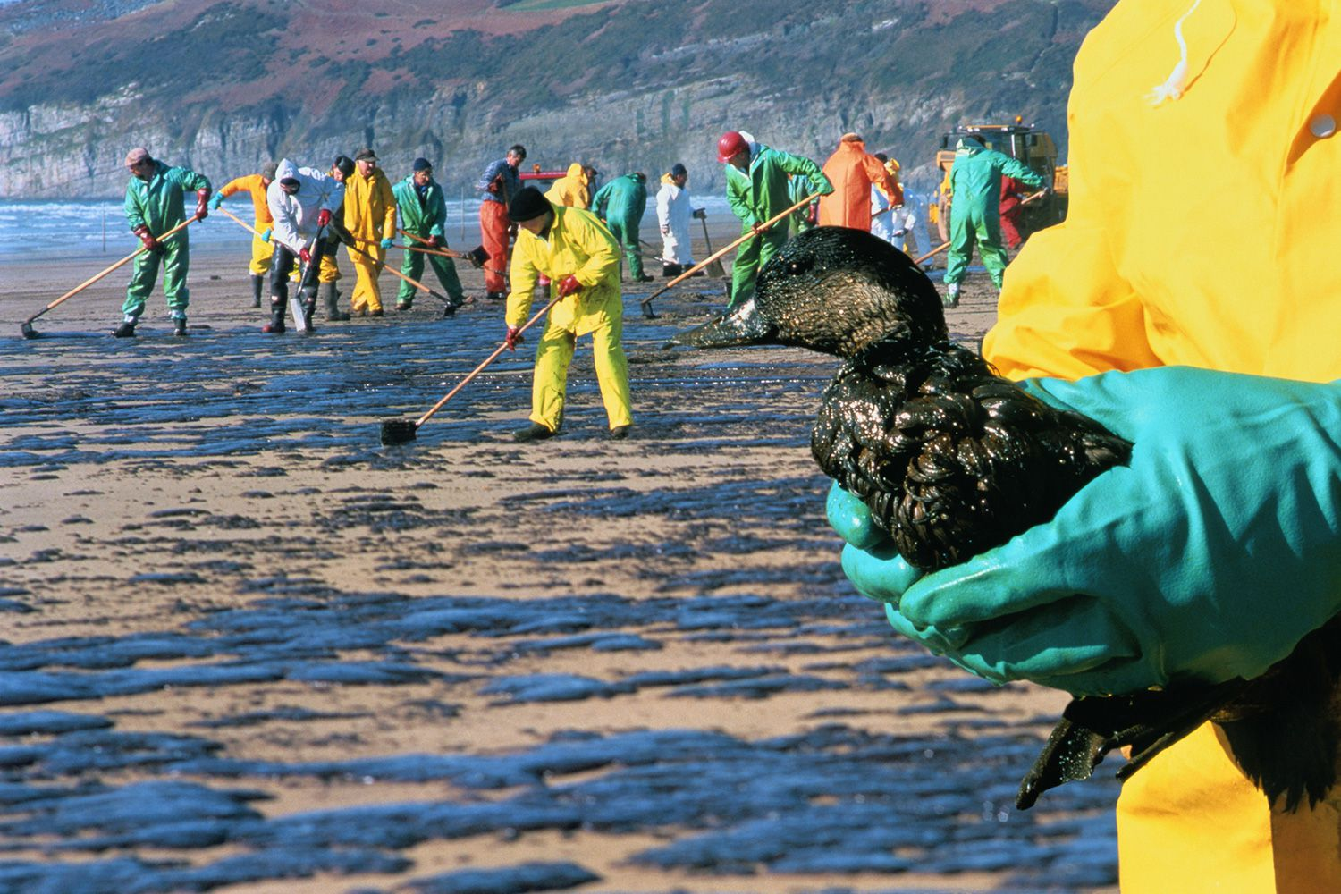 Huge 400 000 Gallon Oil Spill Threatens Ecosystems In The